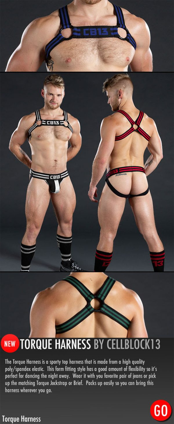 Cellblock 13 Torque Harness